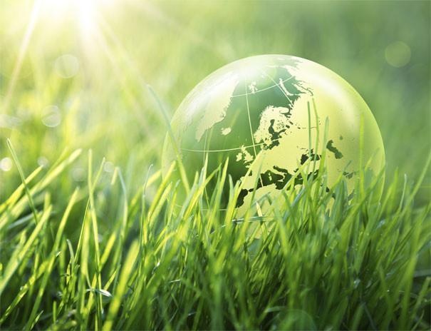 Dezvoltare durabila – Mondo Cariere
