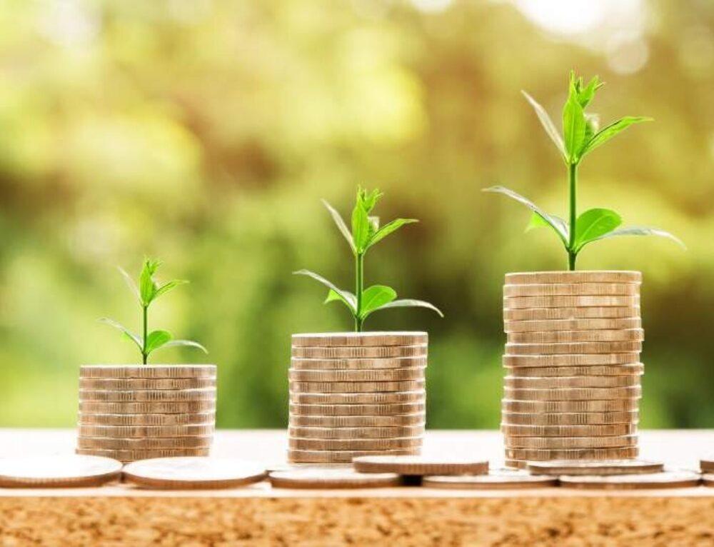 S-a publicat în Monitorul oficial OUG privind ajutoarele de 1 miliard Euro pentru PFA și IMM și grila de punctaj pentru granturile de 200.000 Euro.