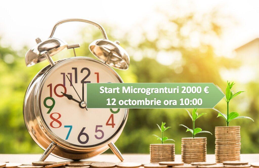 Luni 12 octombrie încep înscrierile pe Măsura 1 – microgranturi de 2.000 Euro